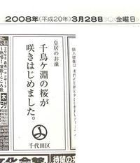 Sakura_r