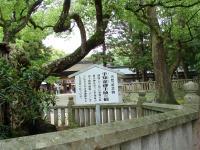 Ooyamadumi
