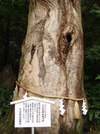Ooyamadumi4