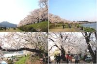 Hinokinaigawa