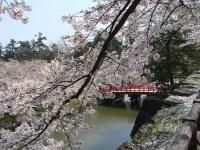 Hirosaki6