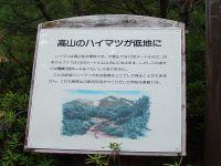 Haimatsu
