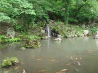 Kichijyoji3