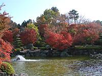 Sakurayama3