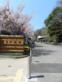Ryokuchi