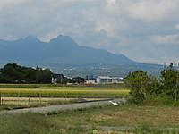 Daisagi2