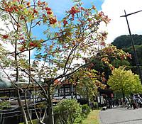 Tateyamastation