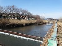 Momonokigawa