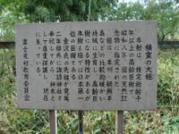 Ookaya3