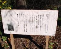 Sanbagawa